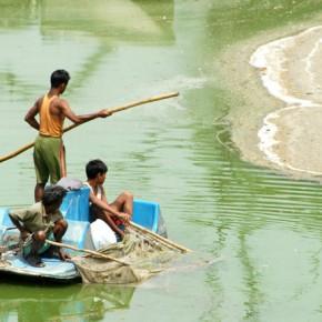 Lakes of Delhi